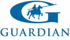 Logo auto szyb Saint Gobain Sekurit
